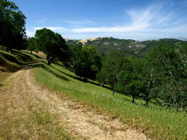 Visit to the Blair Ranch, 5/9/09
