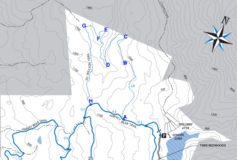 Ed Willson Trail Map