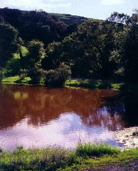 New Views Rainbows And Waterfalls Santa Teresa County Park